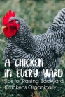 A Chicken In Every Yard Tips For Raising Backyard Chickens Organically: Things To Know About Raising Chickens Cover Image