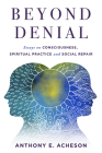Beyond Denial: Essays on Consciousness, Spiritual Practice and Social Repair Cover Image
