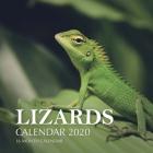 Lizards Calendar 2020: 16 Month Calendar Cover Image