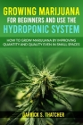 Growing Marijuana for Beginners & Use the Hydroponic System: how to grow marijuana by improving quantity and quality even in small spaces Cover Image