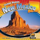 New Mexico (Checkerboard Geography Library: United States (Library)) Cover Image