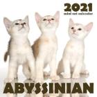 Abyssinian 2021 Mini Cat Calendar Cover Image