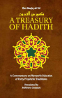 A Treasury of Hadith: A Commentary on Nawawia's Selection of Prophetic Traditions (Treasury in Islamic Thought and Civilization #1) Cover Image