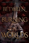 Between Burning Worlds (System Divine #2) Cover Image