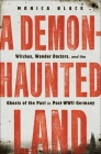 A Demon-Haunted Land: Witches, Wonder Doctors, and the Ghosts of the Past in Post-WWII Germany Cover Image