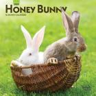 Honey Bunny 2020 Mini 7x7 Cover Image