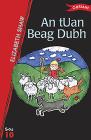 An Tuan Beag Dubh Cover Image