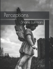 Perceptions: Hyperrealism Cover Image