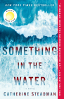 Something in the Water: A Novel Cover Image
