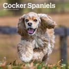Cocker Spaniels 2021 Square Cover Image