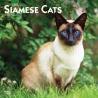 Siamese Cats 2020 Square Cover Image