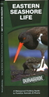 Eastern Seashore Life: A Waterproof Folding Guide to Familiar Animals & Plants (Duraguide) Cover Image