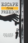Escape From Freedom Cover Image