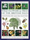 The Illustrated Encyclopedia of Wild Flowers & Trees of the British Isles: An Authoritative Guide to 650 Native and Introduced Species of Flowers, Tre Cover Image