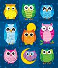 Colorful Owls Prize Pack Stickers Cover Image