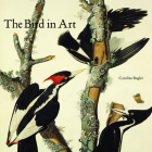The Bird in Art Cover Image