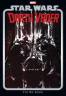 Star Wars: Darth Vader Poster Book Cover Image