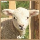 Lamb 2021 Wall Calendar: Official Sheeps 2021 Wall Calendar 18 months Cover Image