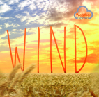 Wind (Weather Explorers) Cover Image
