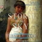Storm in the Sky Lib/E Cover Image