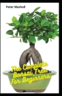 The Complete Bonsai Tree For Beginners: Step Bt Step Instructions On How To Train, Grow, Cultivate, CreateAnd Care For Bonsai Tree Cover Image