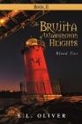The Brujita of Washington Heights: Book II Blood Ties Cover Image