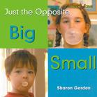 Big/Small (Bookworms: Just the Opposite) Cover Image
