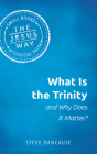 What Is the Trinity and Why Does It Matter? Cover Image