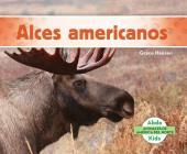 Alces Americanos (Moose) (Spanish Version) Cover Image