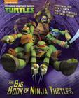 The Big Book of Ninja Turtles (Teenage Mutant Ninja Turtles) (Big Golden Book) Cover Image