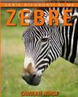 Zebre: Libro sui Zebre per Bambini con Foto Stupende & Storie Divertenti Cover Image