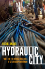 Hydraulic City: Water and the Infrastructures of Citizenship in Mumbai Cover Image