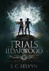 The Trials of Ildarwood: Spectres of the Fall Cover Image