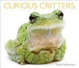 Curious Critters Cover Image