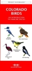 Eastern Seashore Life: An Introduction to Familiar Species (Pocket Naturalist Guides) Cover Image