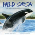 Wild Orca: The Oldest, Wisest Whale in the World Cover Image