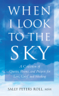 When I Look to the Sky: A Collection of Quotes, Poems, and Prayers for Loss, Grief, and Healing (Little Book. Big Idea.) Cover Image