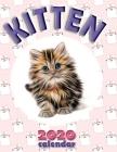 Kitten 2020 Calendar Cover Image