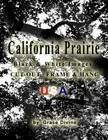 California Prairie Black & White Images Cut-out, Frame & Hang USA Cover Image