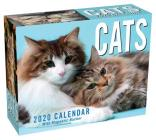 Cats 2020 Mini Day-to-Day Calendar Cover Image