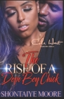 The Rise Of A Dope Boy Chick: An Urban Fiction Novel Cover Image