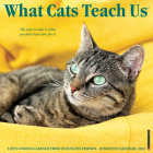 What Cats Teach Us 2021 Wall Calendar Cover Image