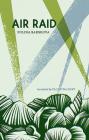 Air Raid Cover Image