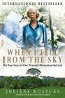 When I Fell From the Sky Cover Image