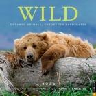 Wild 2022 Wall Calendar: Untamed Animals, Untouched Landscapes Cover Image