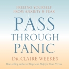 Pass Through Panic: Freeing Yourself from Anxiety and Fear Cover Image