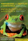 Amphibians and Reptiles of Costa Rica/Anfibios Y Reptiles de Costa Rica: A Pocket Guide in English and Spanish/Guía de Bolsillo En Inglés Y Español (Zona Tropical Publications) Cover Image