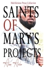 Saints of Mary's Project Cover Image