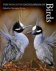 The Princeton Encyclopedia of Birds Cover Image