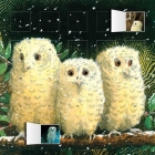Owl Babies Advent Calendar (with Stickers) Cover Image